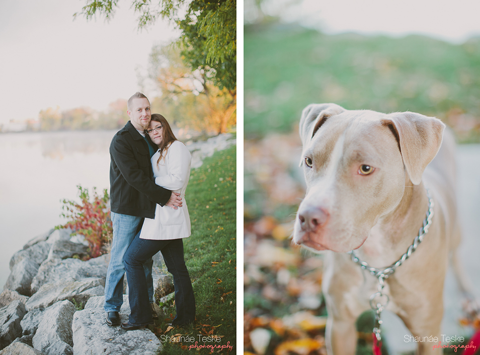 Shaunae_Teske_Photography_Wedding_Portrait_Wisconsin_Karla_Kyle_pitbull_Aston-15